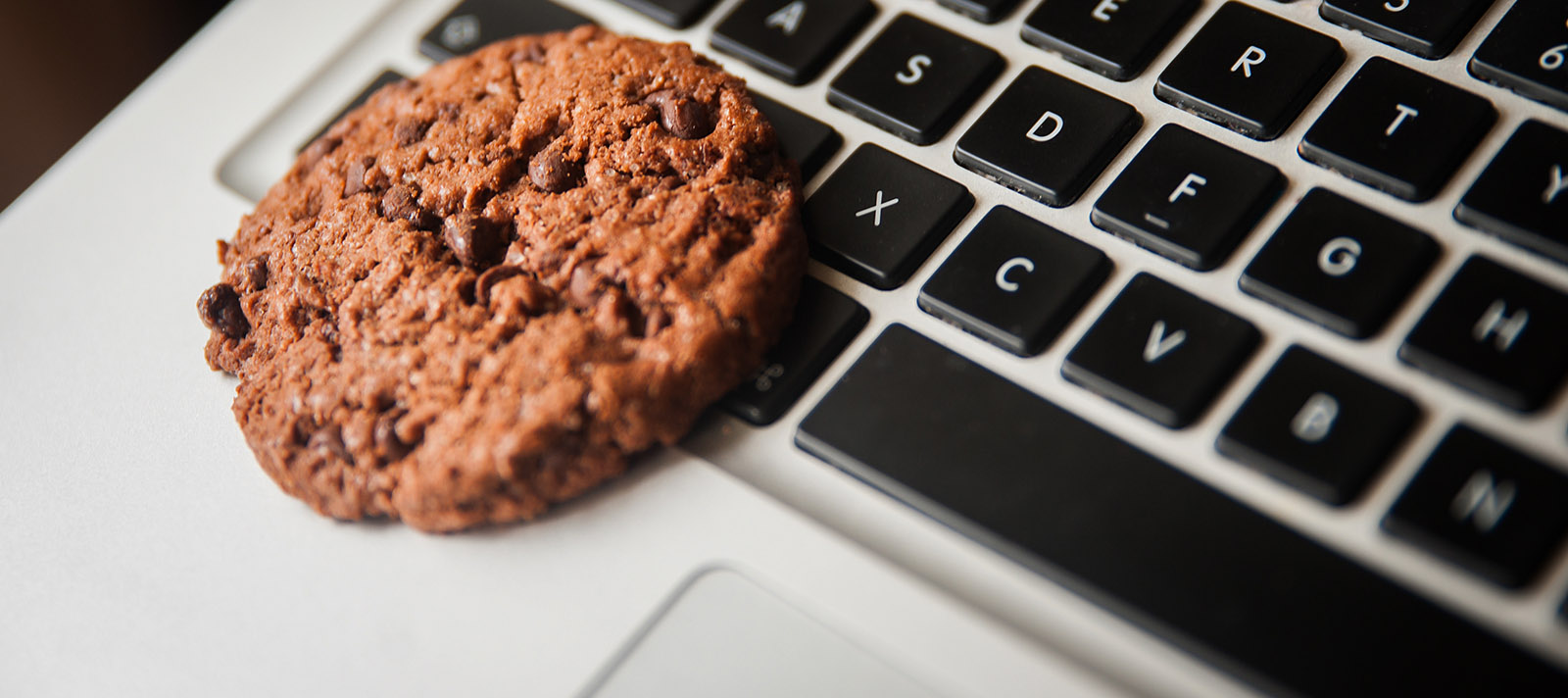 Informativa & Cookie Policy